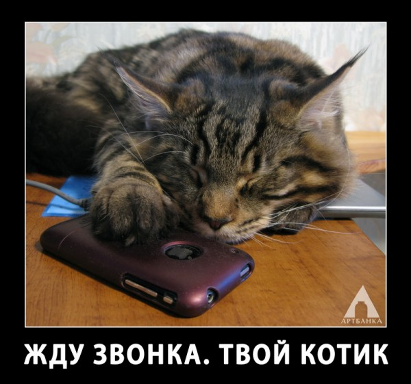 Открытка обещаю позвонить, спокойной ночи любимые
