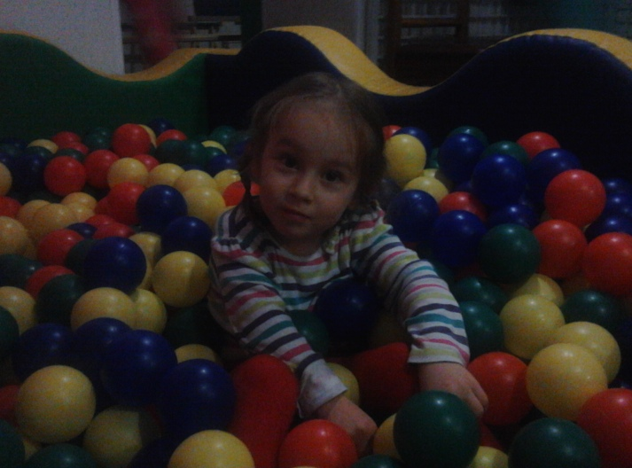Апис-Мелифика 2012.11-2