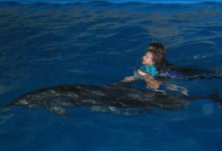 дельфины 2012.07 июль-2