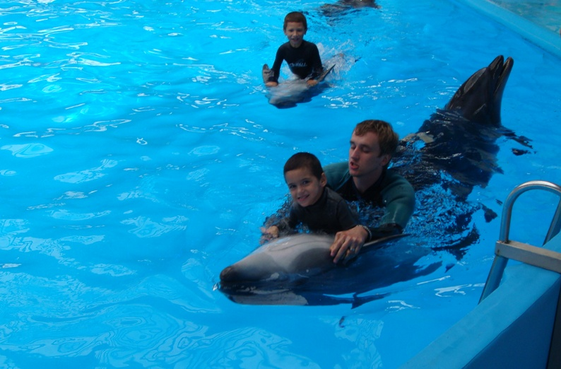 дельфины-2012.08 авг-1