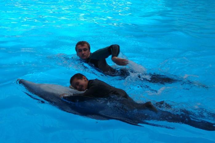 дельфины-2012.08 авг-4