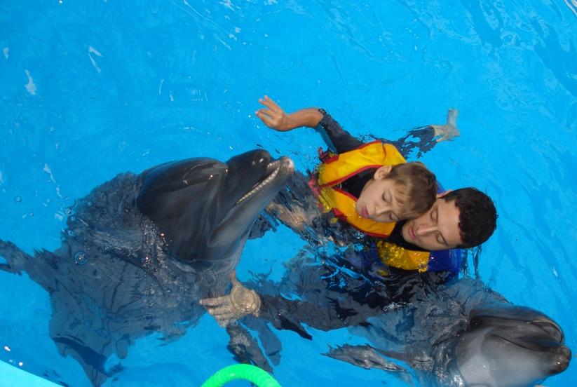 дельфины 2012-сент-1