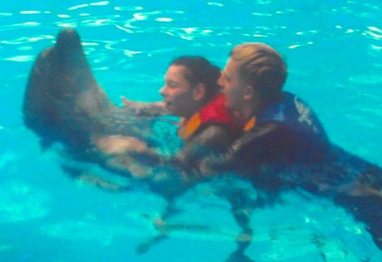 дельфины 2012.10 окт-2