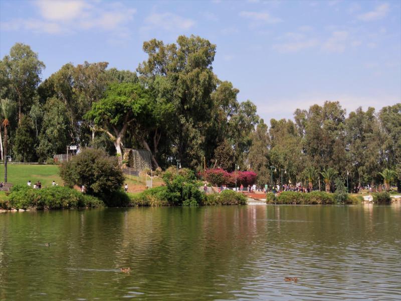 В парке Леуми