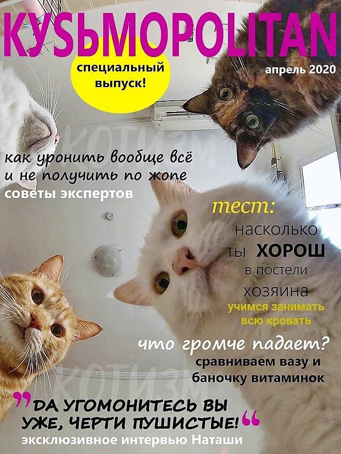 Кузьмополитен