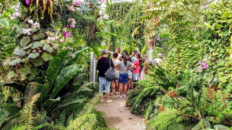 Экскурсия по тропической оранжерее.Фотограф Юдит Маркус
