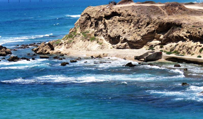 Дикий берег моря