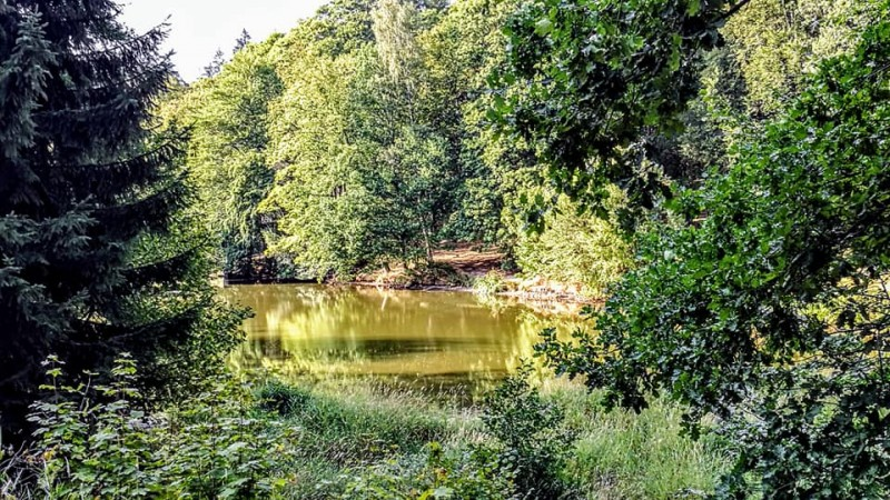 В парке Замка Кинжварт