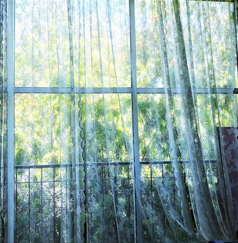 За окном весна