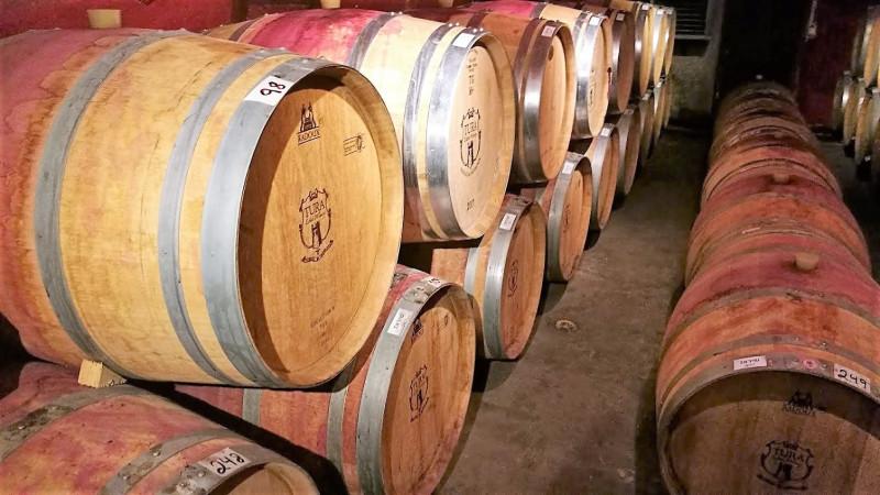 вино вызревает в дубовых бочках