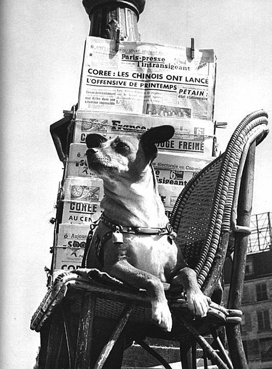 ch grelot, Boulevard Poissonnière 1957 izis