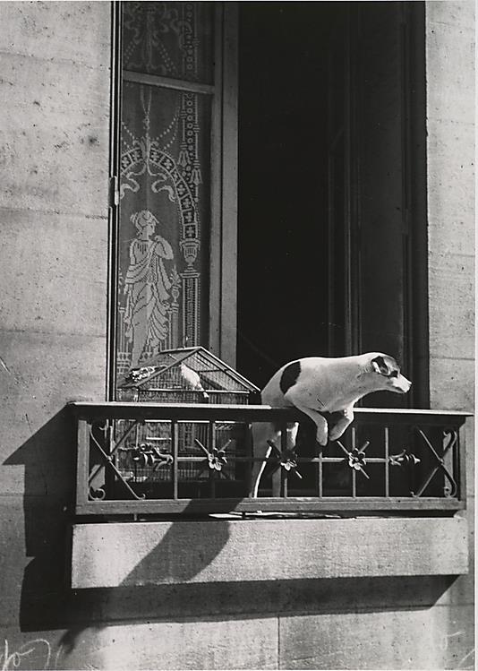 paris 1929 (André Kertész)