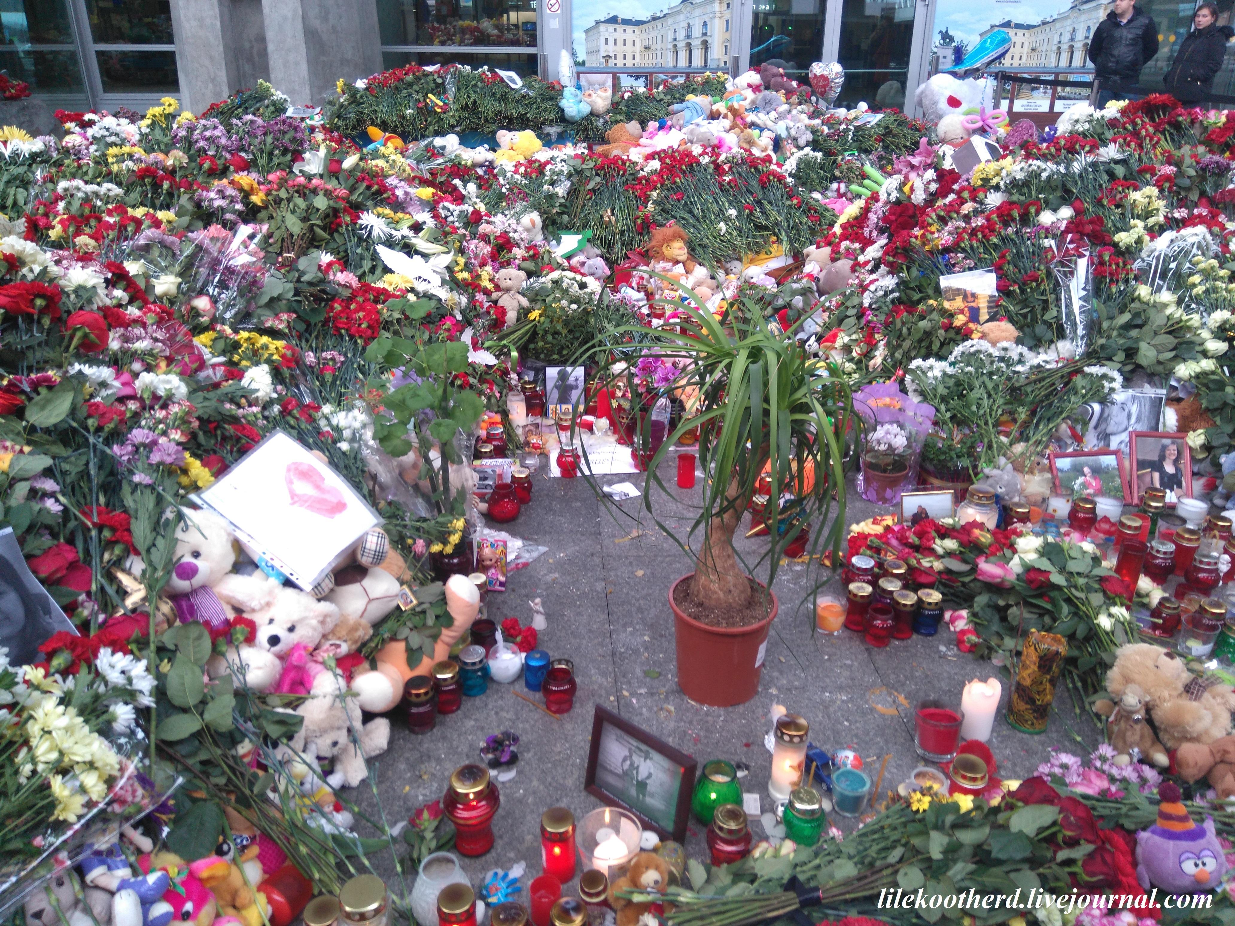 элана цветы в пулково фото жители