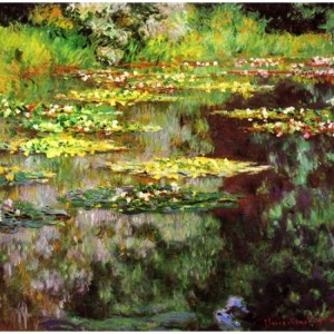 sea-rose-pond
