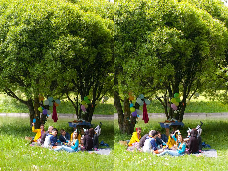 2013-05-26 -  как мы отмечали др на пикнике!!19