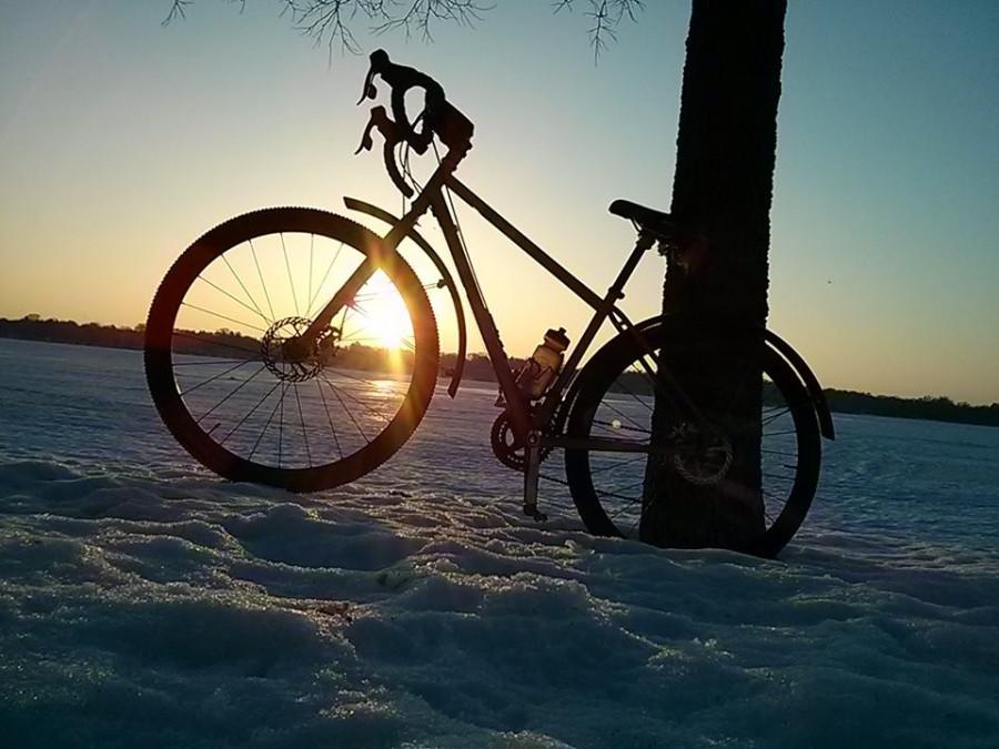 bike moi