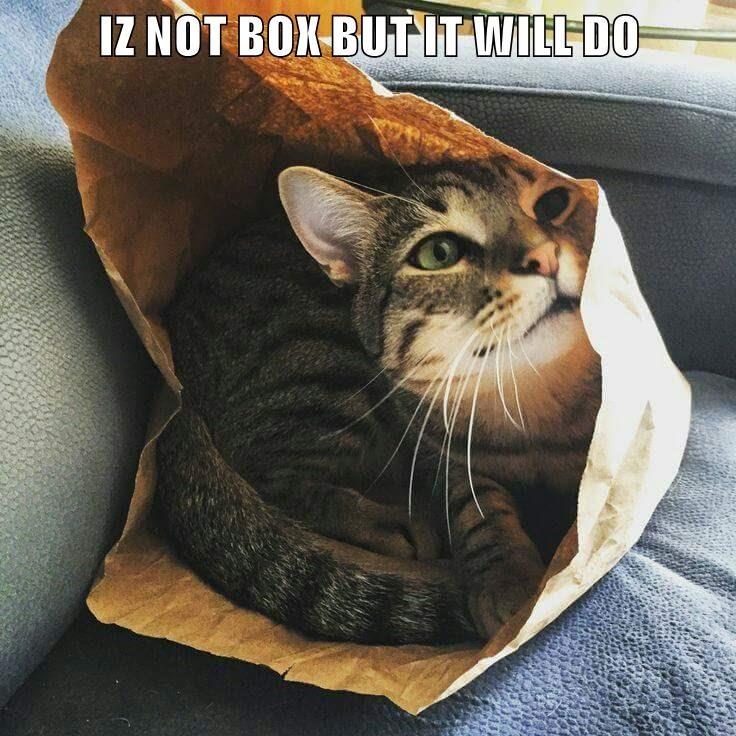isnotbox