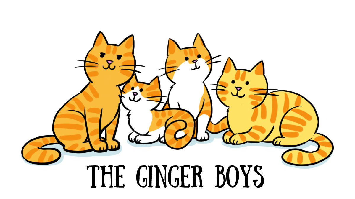 Ginger Boys Animama
