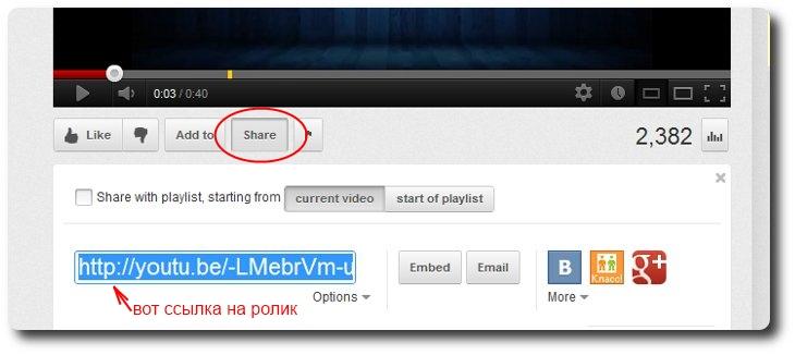 url видео