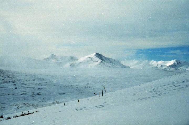 Перевал Дятлова в наши дни. Фото: Гугл.