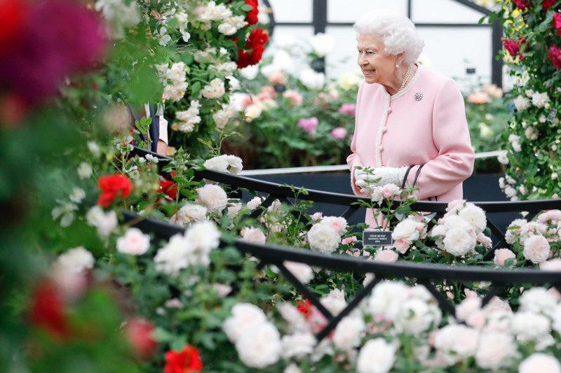 Фото: RHS Chelsea Flower Show
