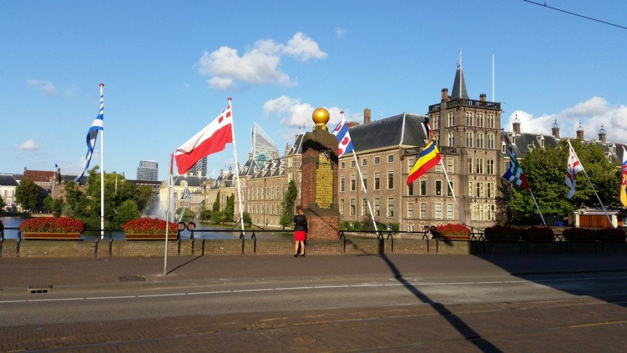 Pretty Face of The Hague