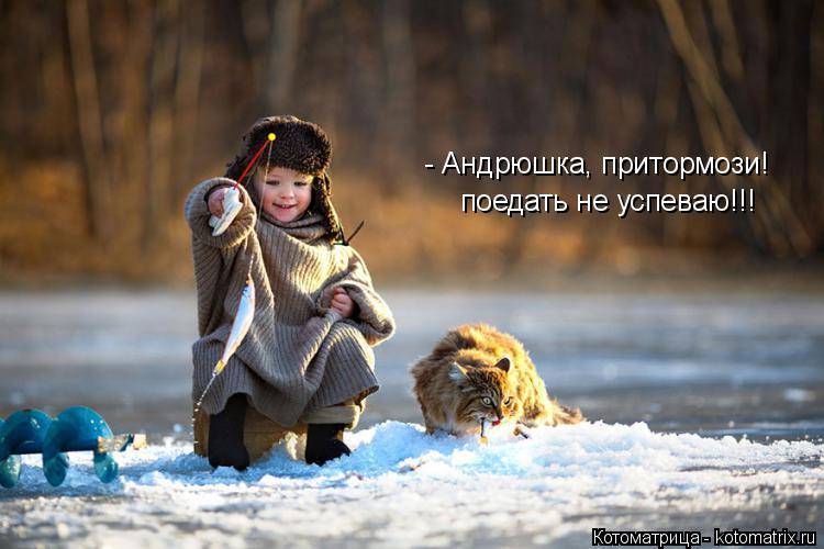 kotomatritsa_mW