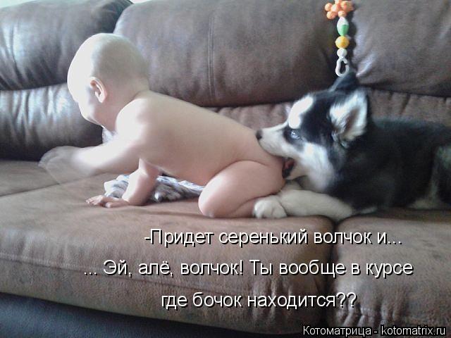 kotomatritsa_P3