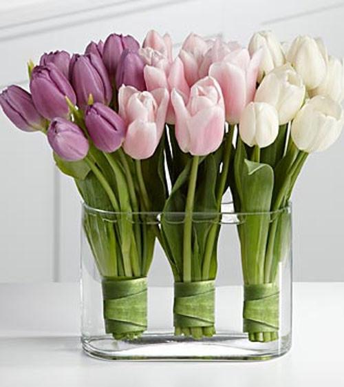 tulip-bunches