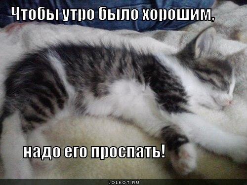 utrechko_1353586344