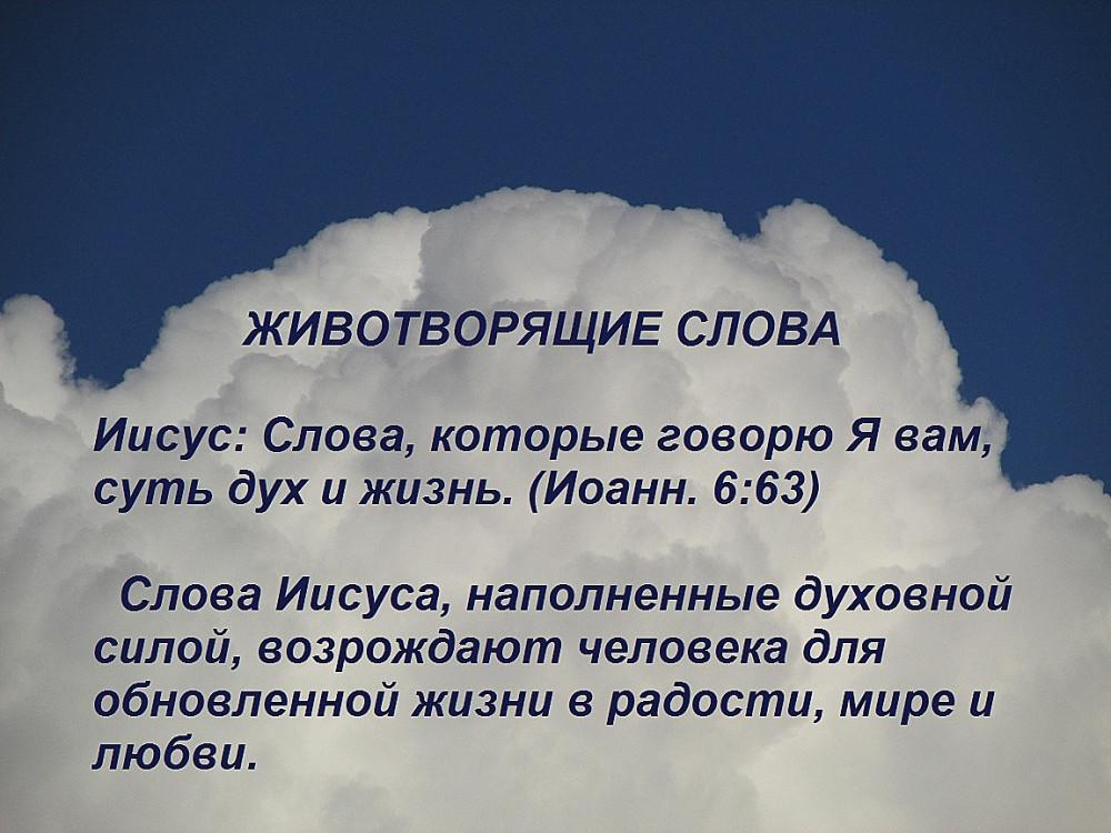 IMG_1355 1 3