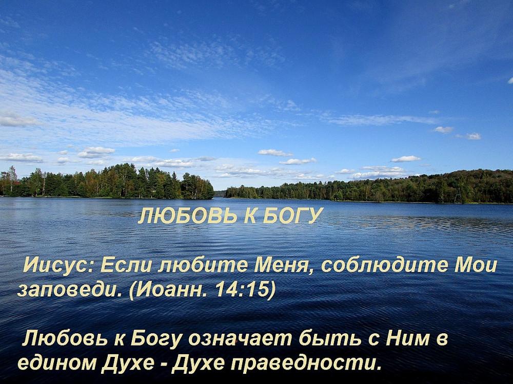 IMG_9081 — копия3