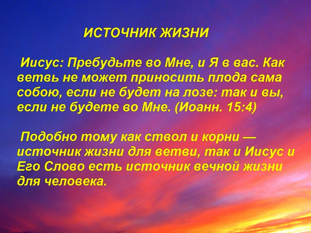IMG_3359 — копия3