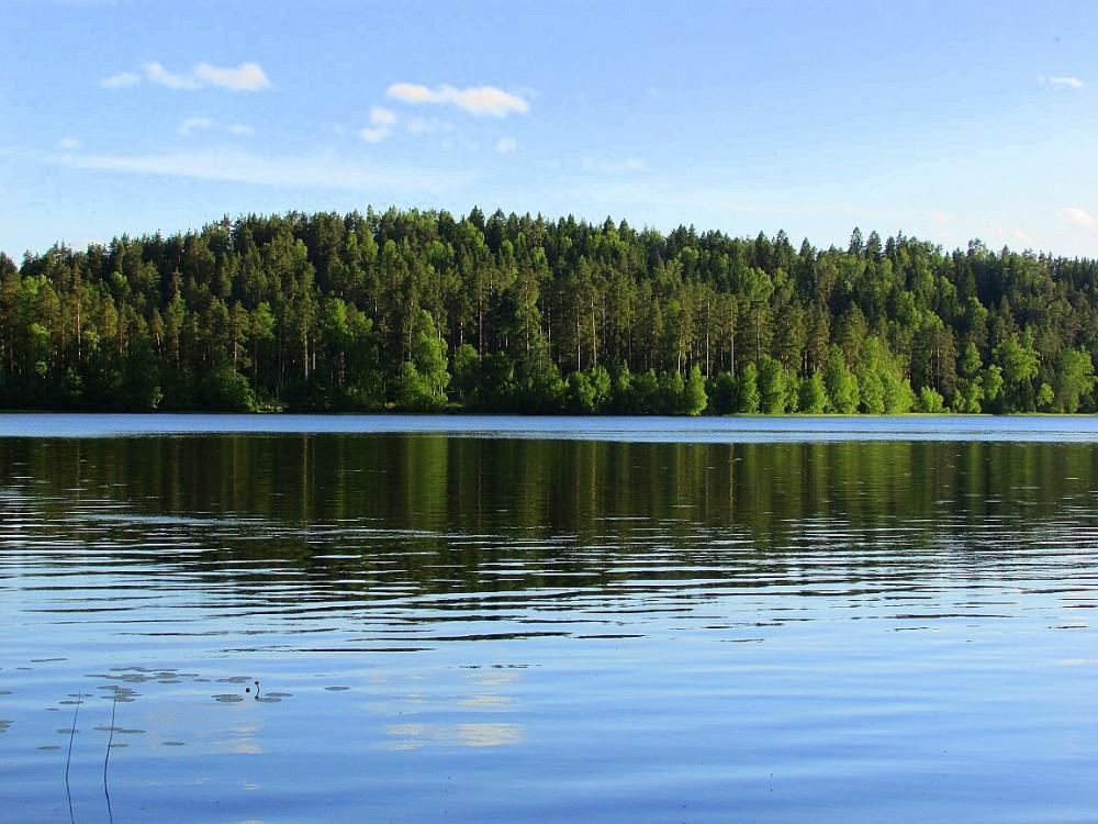 Все озера Ленинградской области - рыбалка