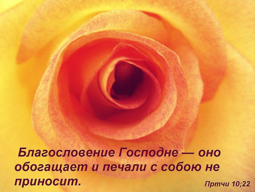пр1022ф