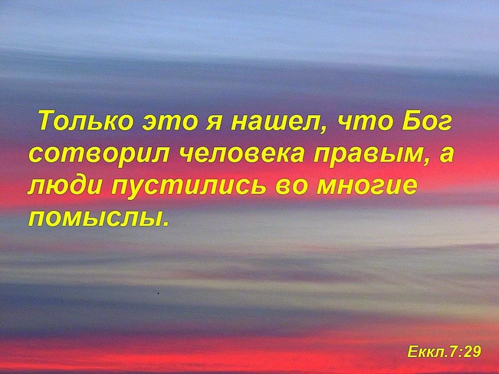 еккл729ф