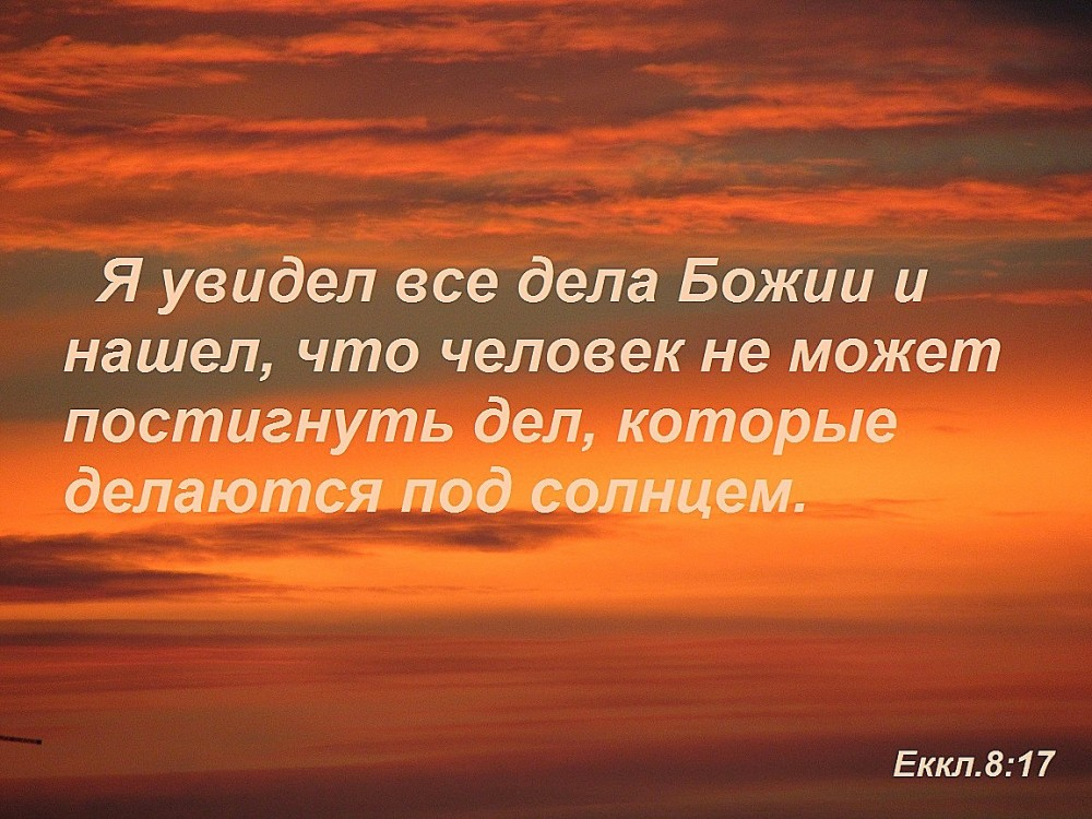 еккл817