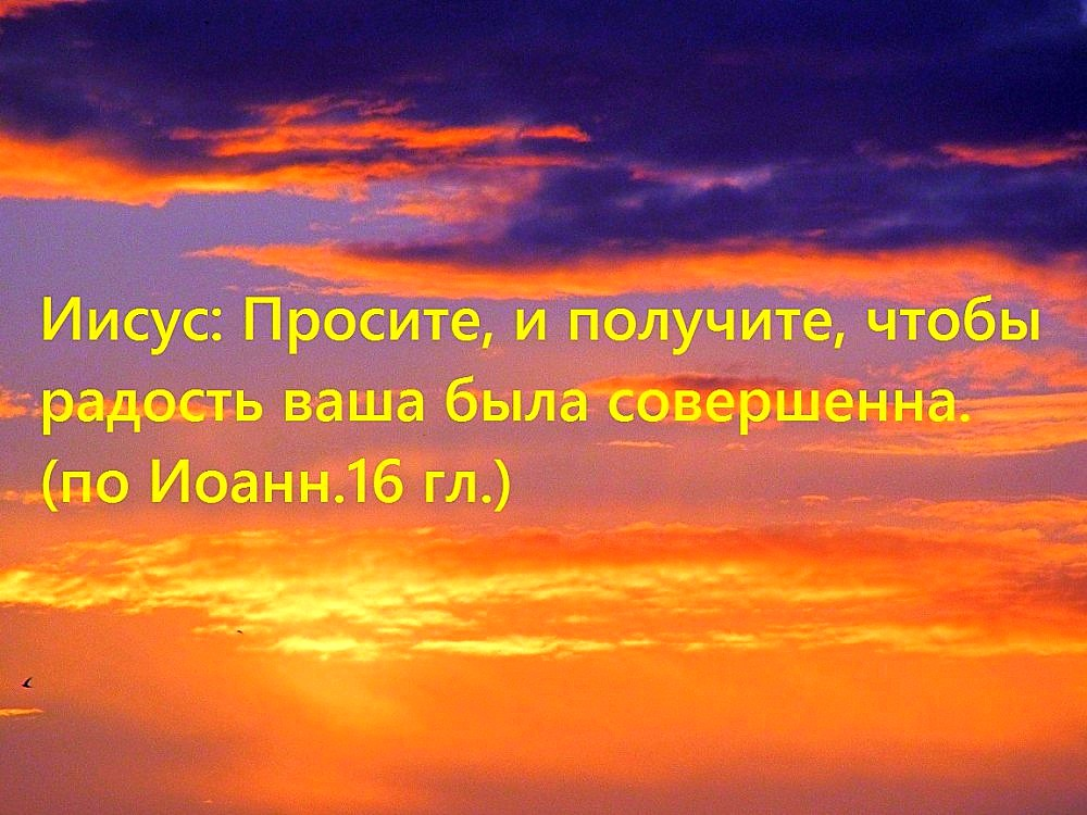 549465_1000ф
