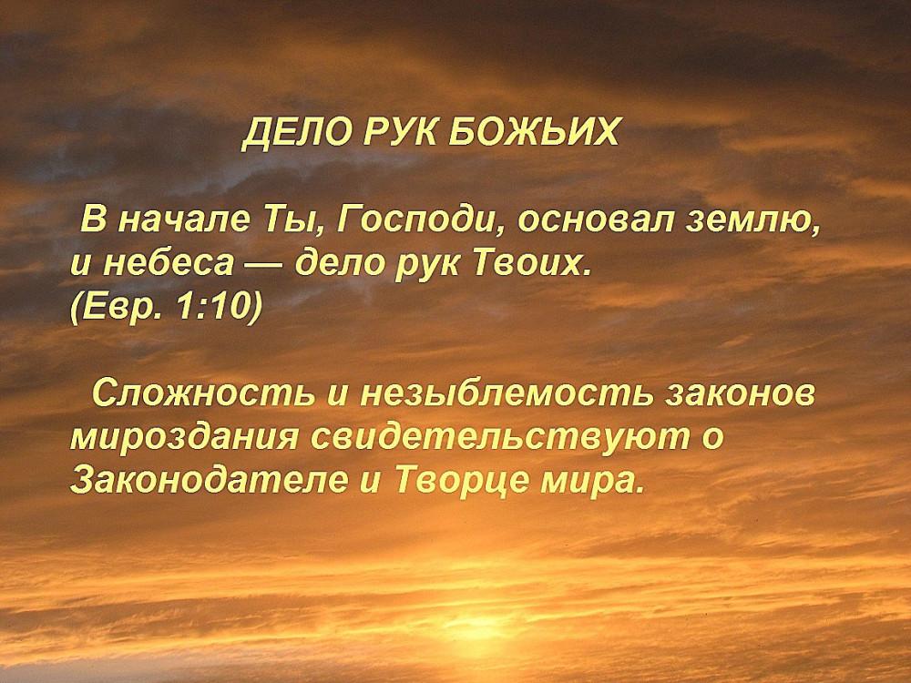 IMG_7729 — копия1