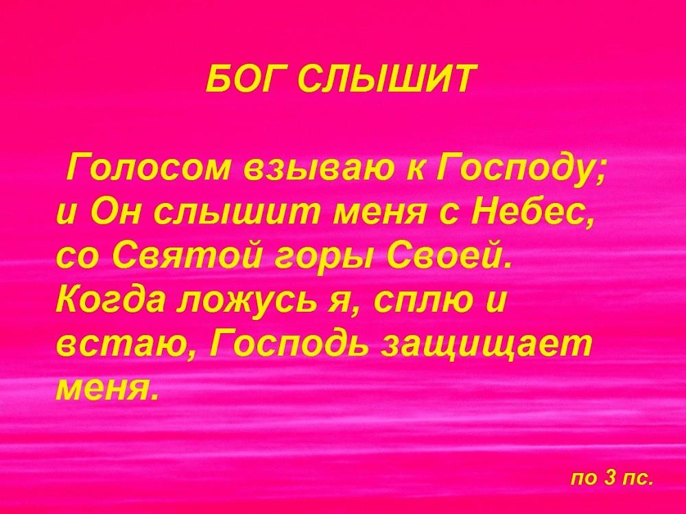 IMG_2564ффф — копия1