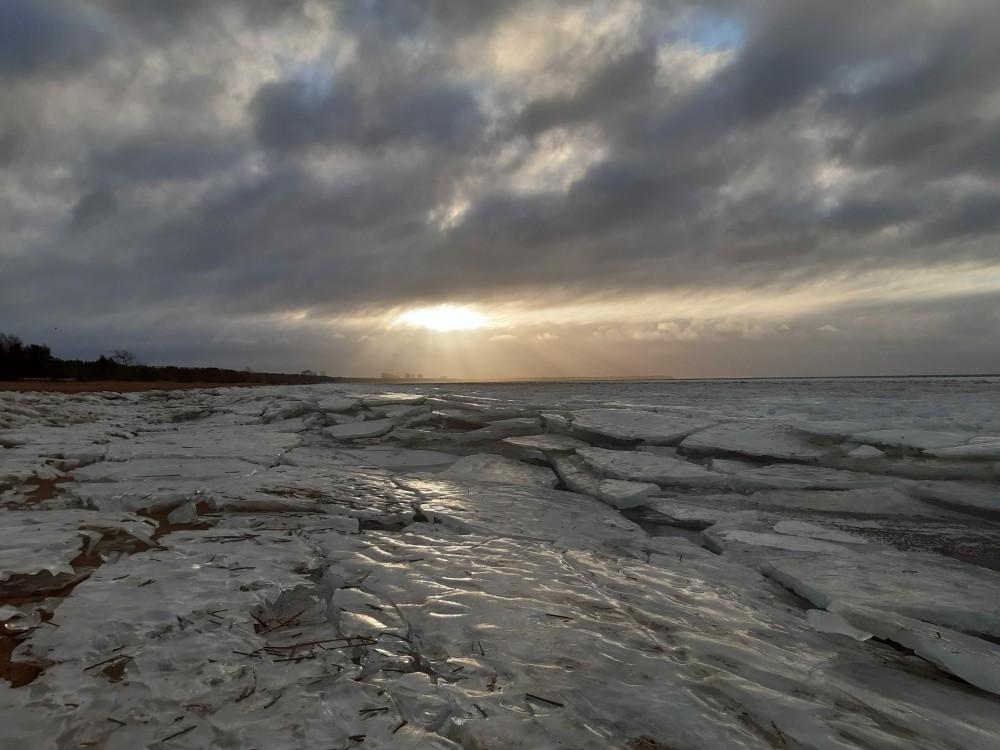 финский залив фото сегодня проводится поддержку детей