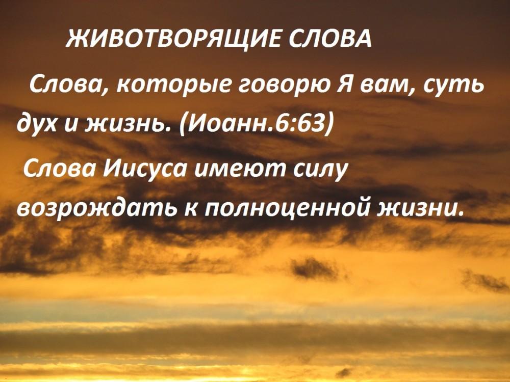 IMG_0373