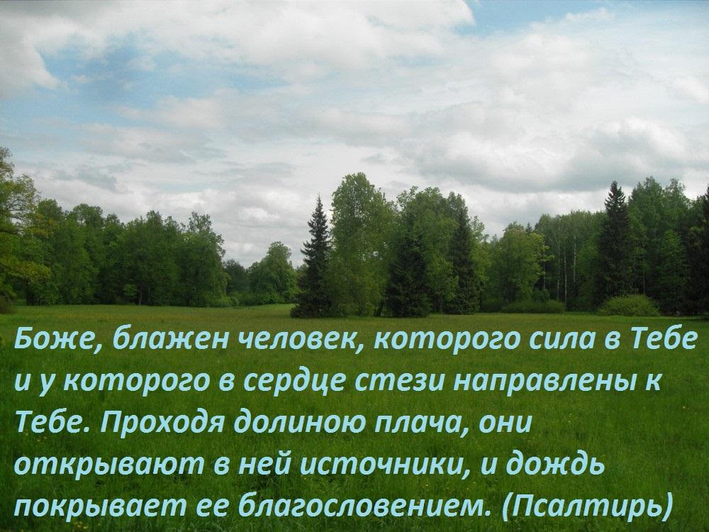 112289_1000 (2)