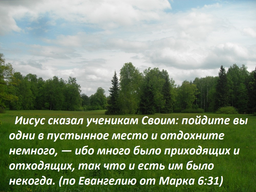 112289_1000 (3)