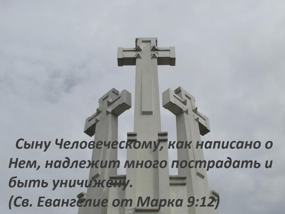 IMG_3439 (2)