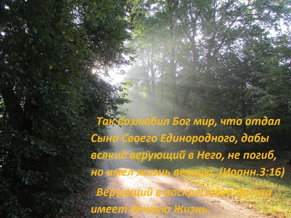 IMG_2583 (2)