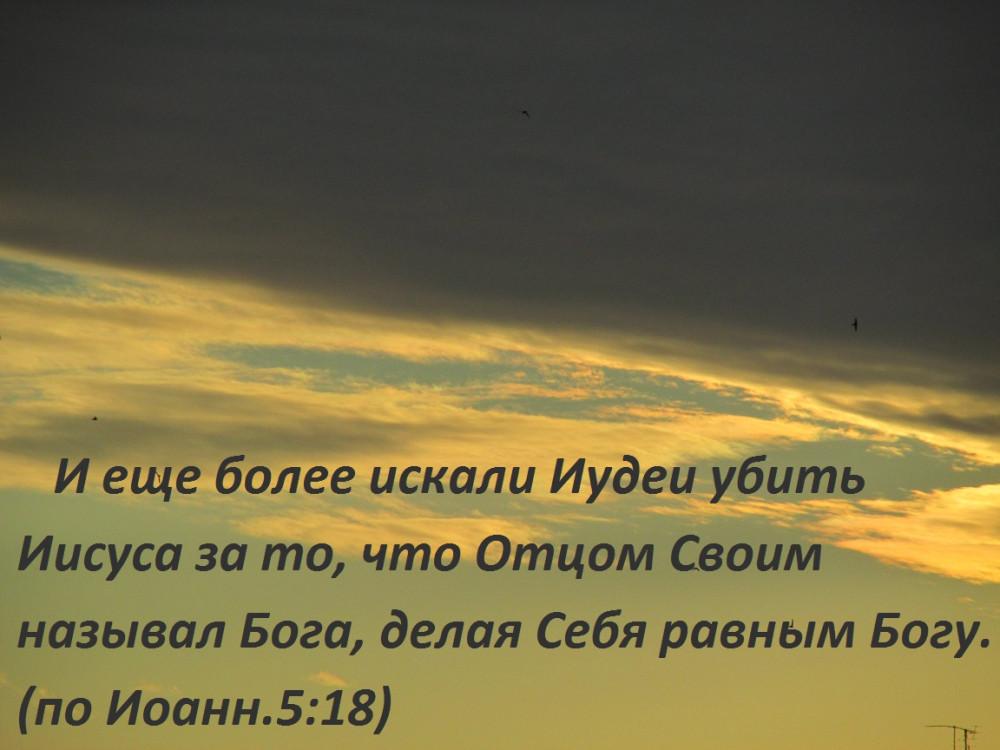 IMG_0214