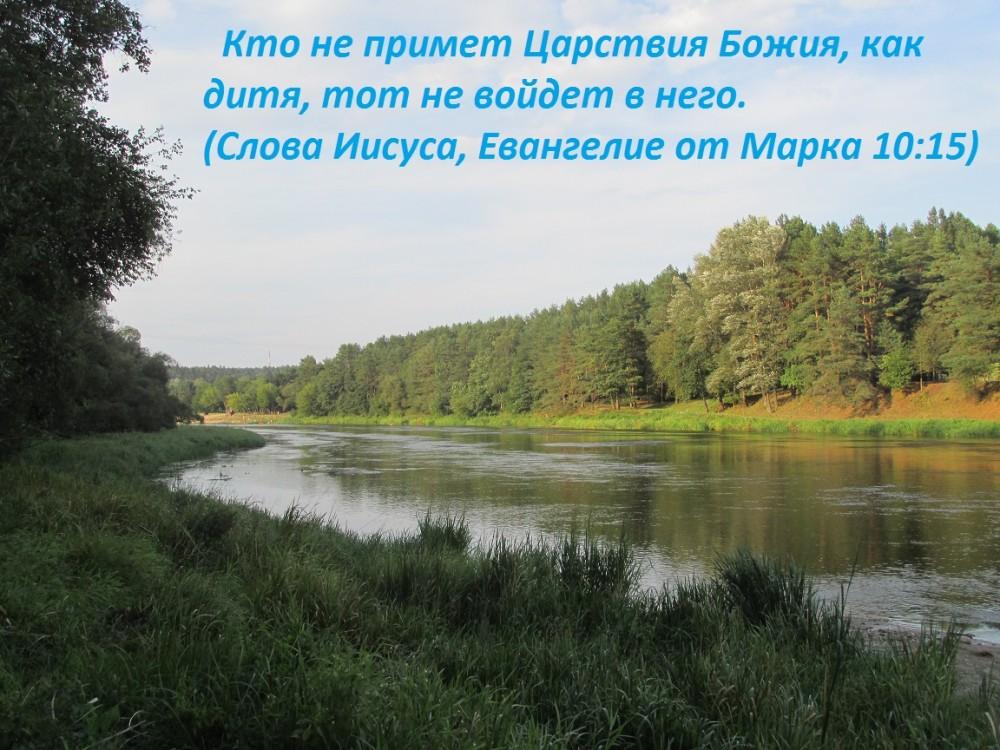 IMG_2897 (2)