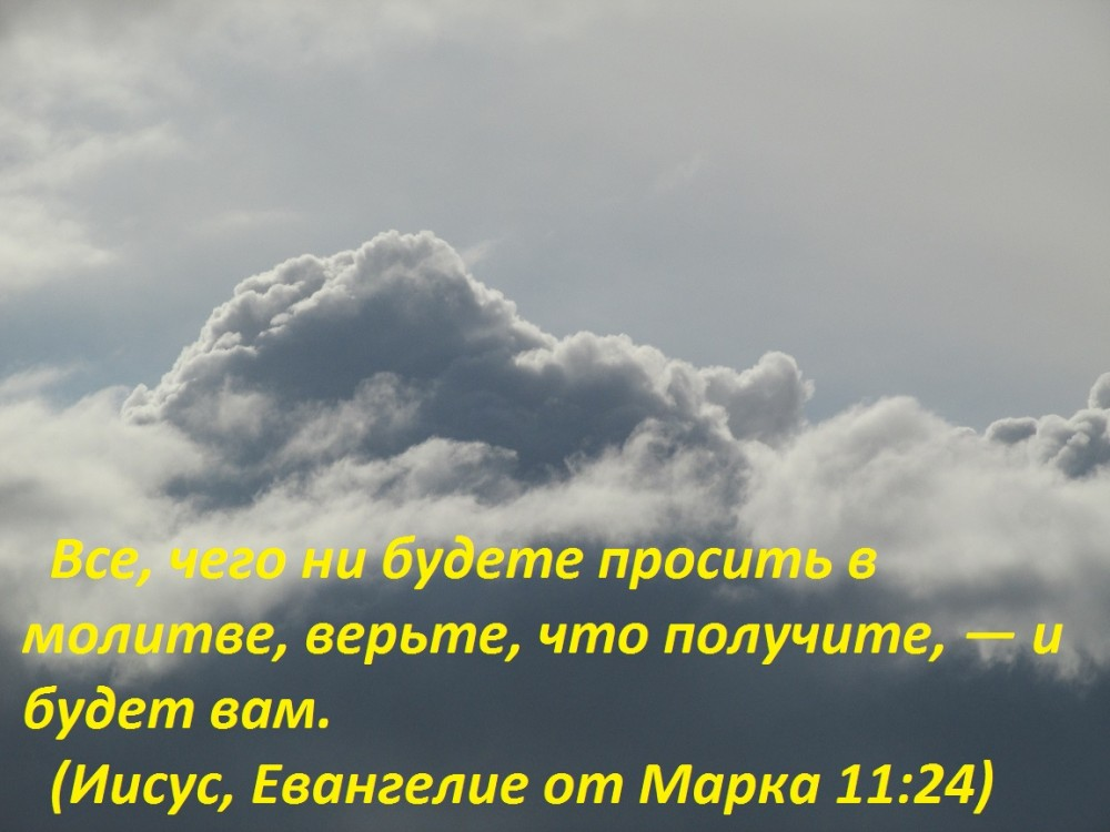 IMG_3810