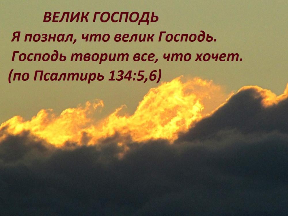 IMG_7940 - копия